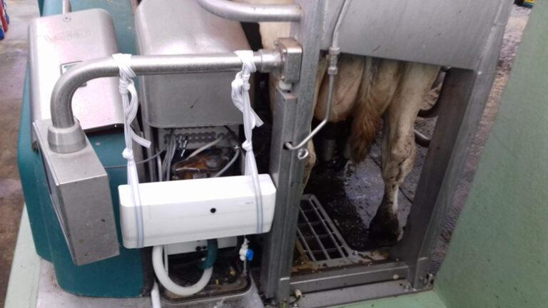 Lely compró la empresa Milkalyser para saber cuándo una vaca está en celo