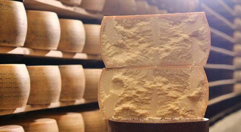Las sorprendentes razones por las que el queso parmesano es un alimento «casi perfecto»