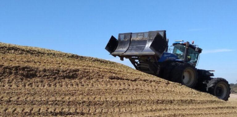 El silo de maíz, una herramienta central de la producción lechera.