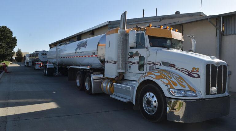 EE.UU.: Fuerte recuperación de la producción de leche