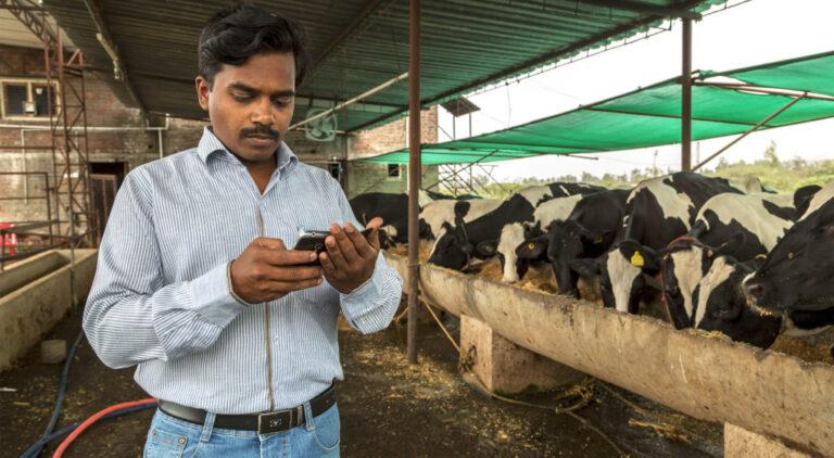 India busca consolidar el autoabastecimiento y crecer en la exportación