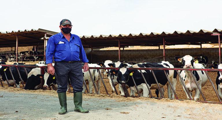 Ganadería Frontina: ejemplo de constancia y espíritu de sacrificio desde la comarca de Guadix
