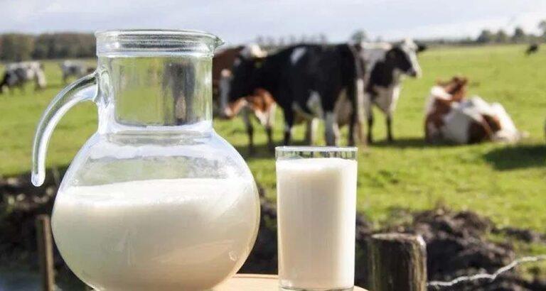 Análisis del Mercado Lácteo Mundial a fines de octubre