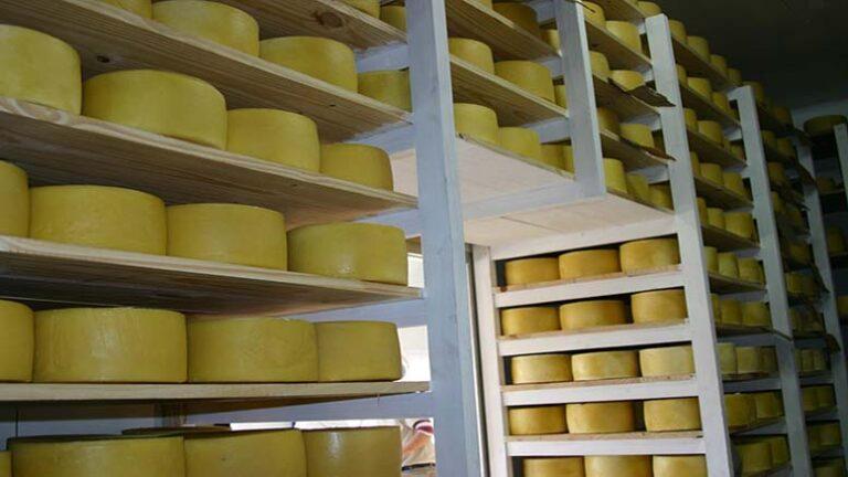 Ranking de exportadores de queso de Latinoamérica