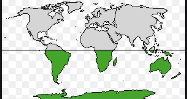 Lechería: ¿Qué está pasando en el Hemisferio Sur?