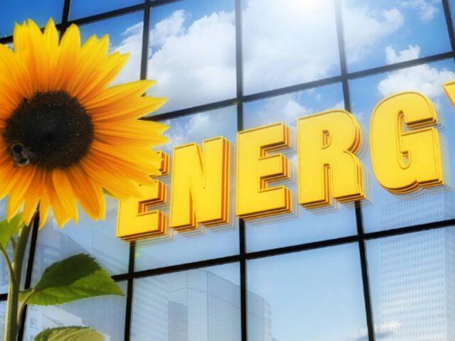 Recalculando: La oferta de energía de una dieta